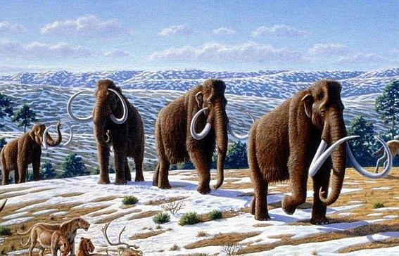 Доисторических зверей уничтожили доисторические люди