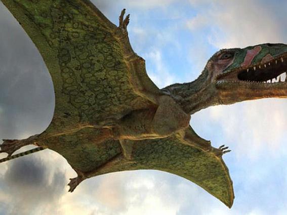 Археологи нашли остатки древних летающих рептилий размером с самолет