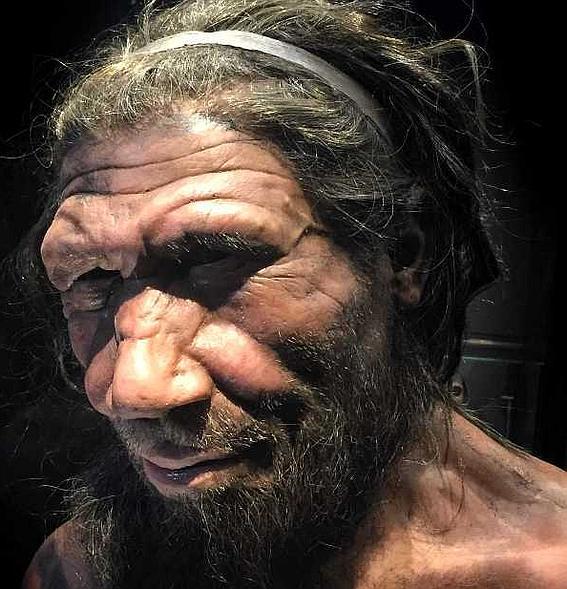 Неандертальцы и современные люди - абсолютно разные ветви развития